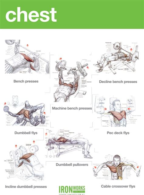 chest workout aa health fitness