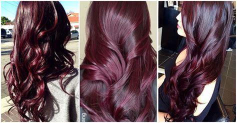 ombr 233 hair aubergine