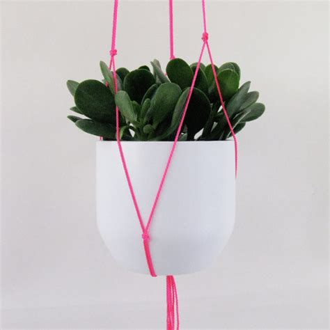 Decorative Indoor Hanging Planters by Neon Pink Hanging Plant Holder By Blisscraft Brazen