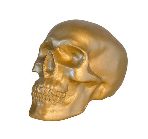 gold skull gold skull barbara smith paintings