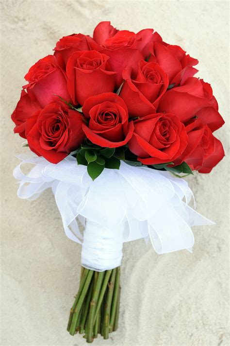 red white and pink roses pictures to pin on pinterest solid red rose bouquet with white ribbon stem wrapping