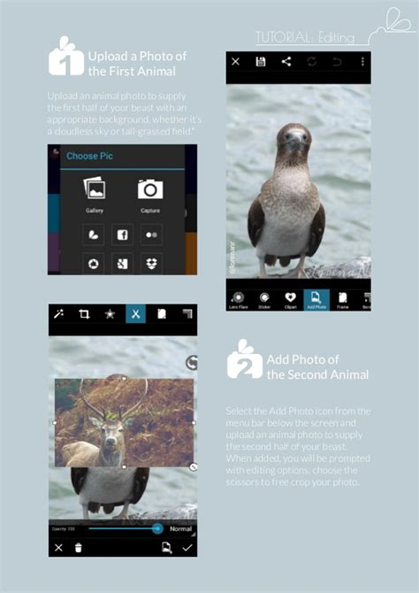 picsart tutorial crop picsart monthly january 2014 issue