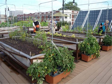 Play A Trick In Your Limited Space Trough Rooftop Gardens Rooftop Vegetable Gardening
