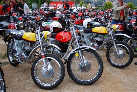 motos scrambler