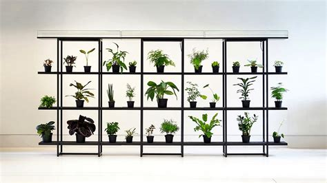 pikaplant one shelf can automatically water your plants