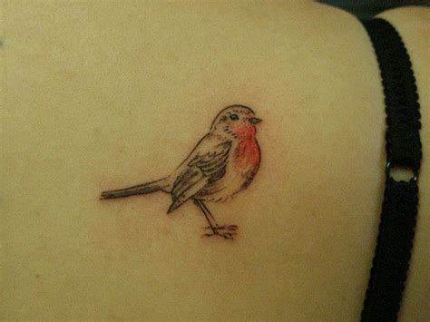 small robin tattoo 25 best ideas about robin on robin