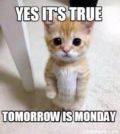 Its Monday Tomorrow Meme - meme creator yes it s true tomorrow is monday meme