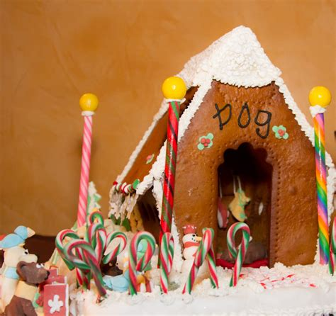 dog gingerbread house lucky dog gingerbread houses houston pettalk