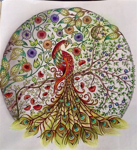 secret garden colouring book toronto 42 best images about peacock secret garden pav 227 o jardim