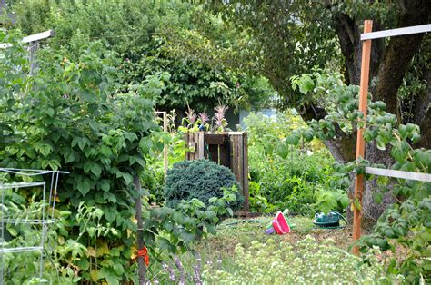What Is A Community Garden by File Colonel Summers Community Garden Jpg Wikimedia Commons