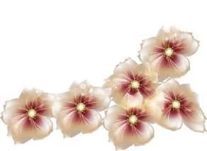 Transparent flower clipart galleryhip com the hippest