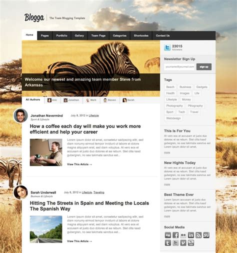 blogs design top 10 wordpress templates for blogs with responsive design