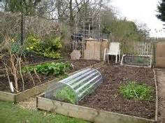 Raised Bed On Patio 1000 Images About Allotment Ideas On Pinterest Garden