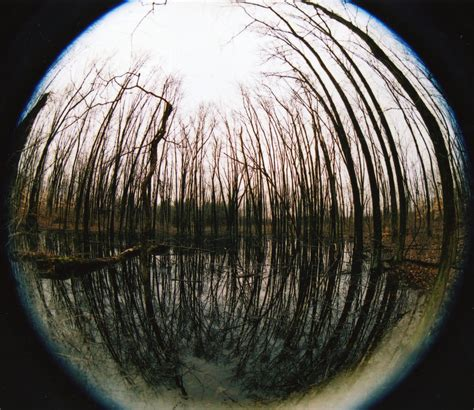 Fish Eye Pictures