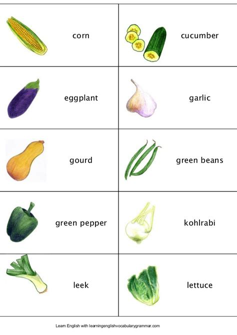 vegetables vocabulary fruit vegetables berries and vocabulary