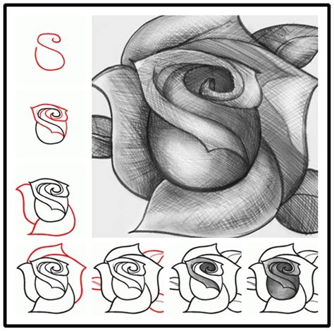 how to draw doodle roses wonderful idea for drawing a beautiful
