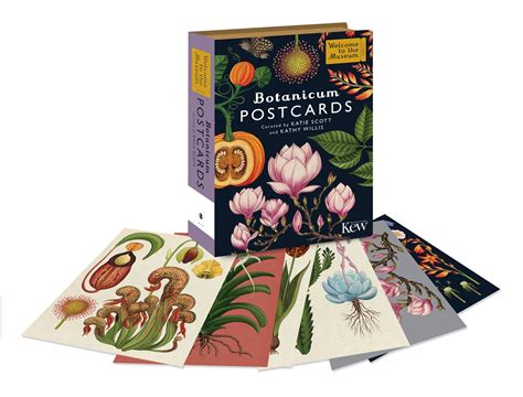 libro animalium postcards welcome to botanicum postcard collection kew gardens shop