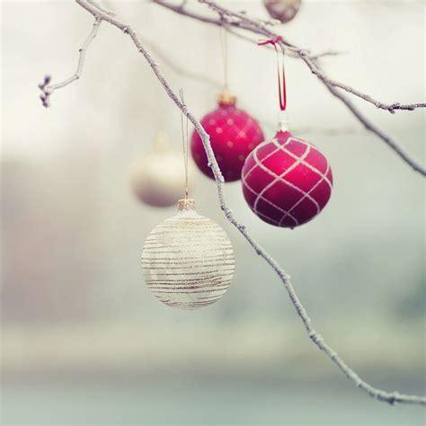 decoracion navide a con ramas tendencias y consejos de iluminaci 243 n para el hogar