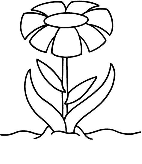 fiore disegni disegni di fiori da colorare foto 14 40 nanopress donna