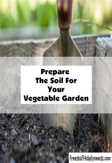 prepare soil for vegetable garden prepare the soil for your vegetable garden free stuff 4