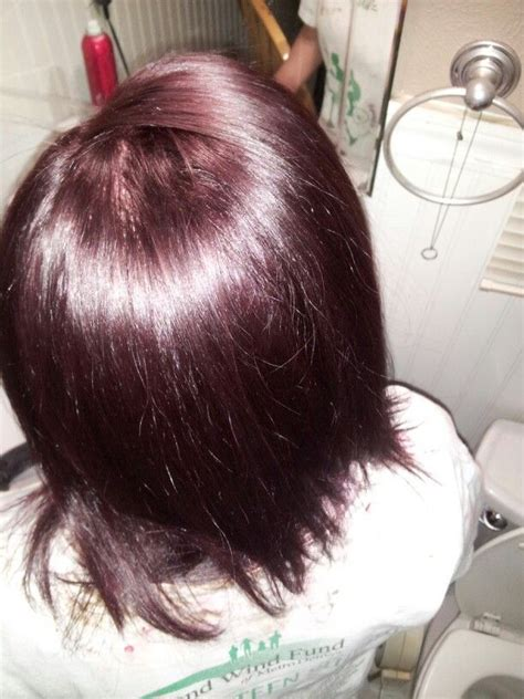 4rv hair color 4rv medium burgundy brown hair meee brown