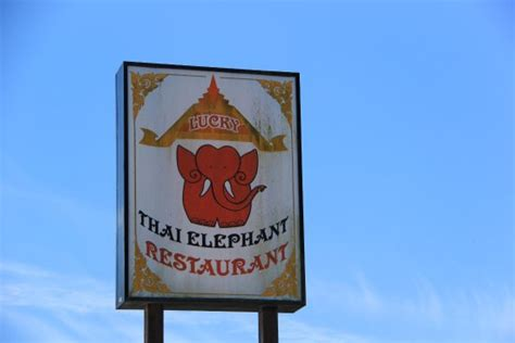 Pch Sign In - beautiful picture of lucky thai elephant restaurant
