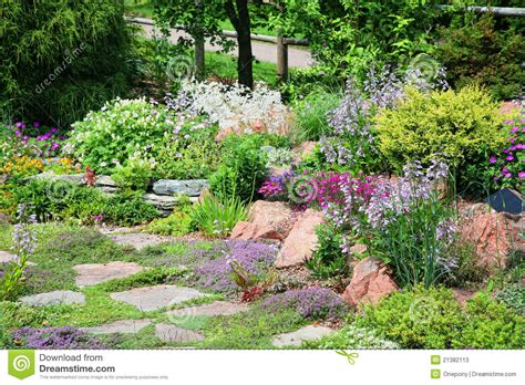 Alpine Rock Garden Stock Photos Image 21382113 Alpine Rock Garden