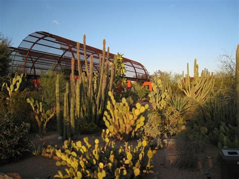 Is The Botanical Garden Free Desert Botanical Garden Free Admission Arizona Families Free Admission At Desert Botanical