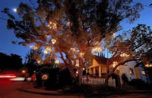 tree chandelier chandelier tree is a twinkling in silver lake la times