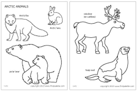 6 best images of arctic animals printables arctic tundra