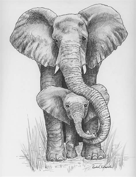 pen and ink drawing of mama and baby elephant print