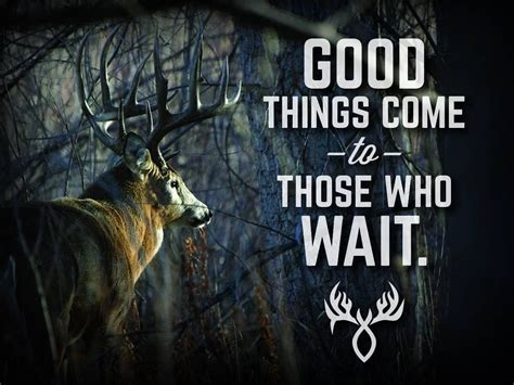 good bow hunting quotes
