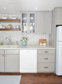 Wood look vinyl floors and shelves gray cabinets