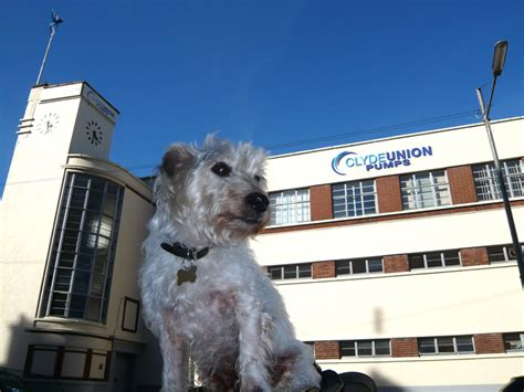 Sir Banister Fletcher Weirs Of Cathcart Glasgow Dog And Deco
