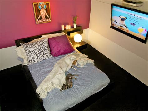 kvuecom  austin dog hotel offers queen sized beds