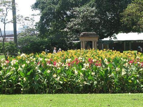 Botanic Gardens Durban Durban Botanical Gardens Picture Of Durban Botanic Gardens Durban Tripadvisor