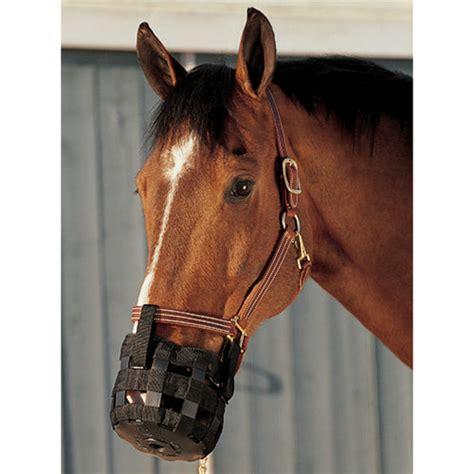 Cribbing Muzzles For Horses by Cribbing Deterrents Muzzles