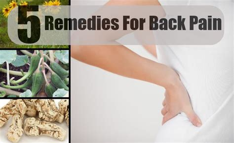 herbal remedies for back treatments cure for back
