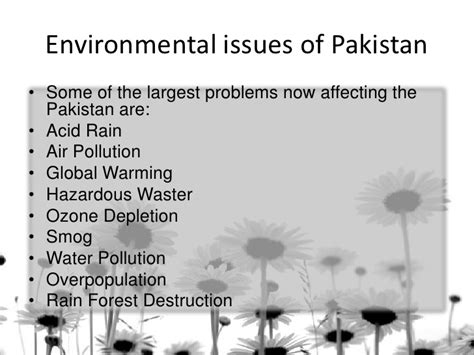 Environmental Problems In Malaysia Essay by Essays On Environmental Issues Essays On Environmental Issues Edu Essay Tips For Writing
