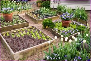 Best raised garden bed design home design ideas