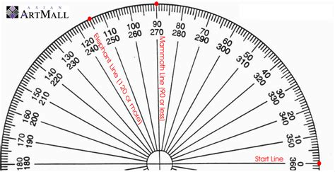 printable protractor celebrity portal worksheets using protractors