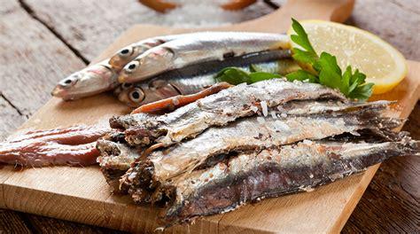 cucinare le sardine fresche le sarde sardine sardelle o sardoni