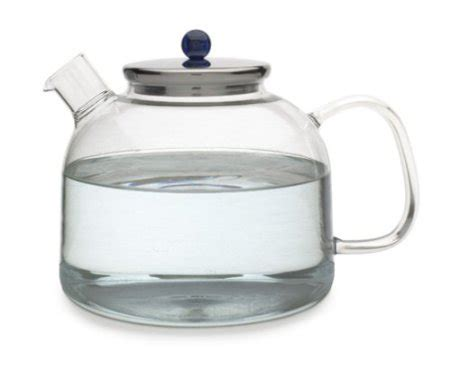 Review The Ingenuitea Microwavable Tea Pot by Top Glass Teapots The Tea Supply