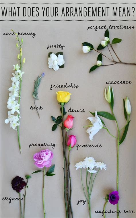 Wedding Bell Meaning by Flower Symbolism Meaning Peonies Bouquet Plants And