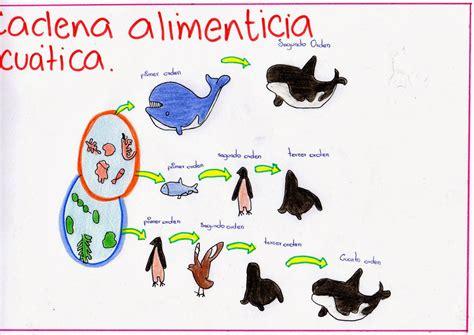 cadena trofica acuatica wikipedia origen de la vida diciembre 2013
