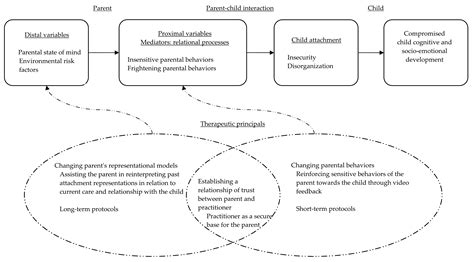 attachment theory in building connections between children and attachment theory in the assessment and promotion of