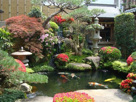 imagenes de zen koi ein japanischer garten gestalten praktische tipps und tricks