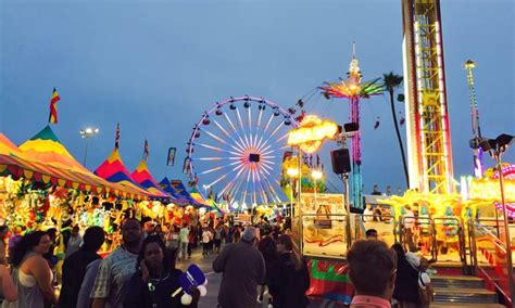 del mar fair reading certificates home sandiegosailingtours com