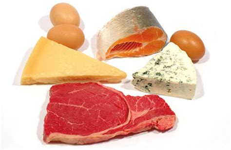 protein meats eat your the building bounty of beef and fish