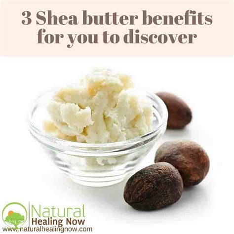 Shea Butter Benefits by What Are Shea Butter Benefits